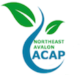 NAACAP - Northeast Avalon ACAP